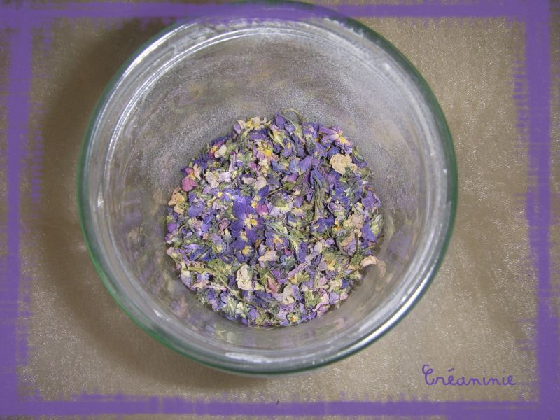 violette1.jpg